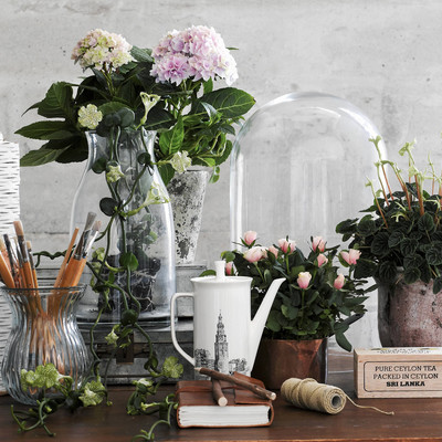 Sommerens plantetrend: Botanical Renaissance
