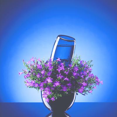 Lämna dina sommarväxter - med gott samvete