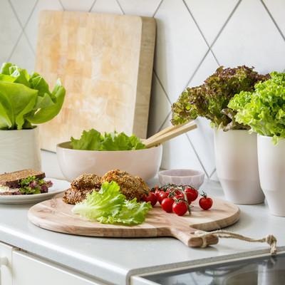 Frisk salat ved hånden sommer og vinter