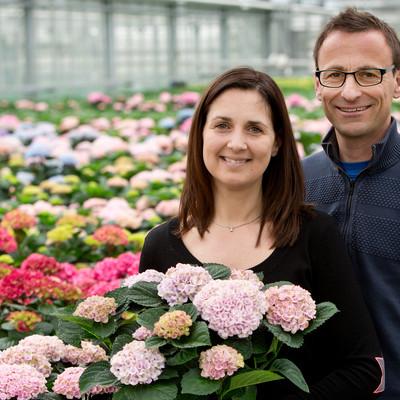 Blomsterflor i 150 dage