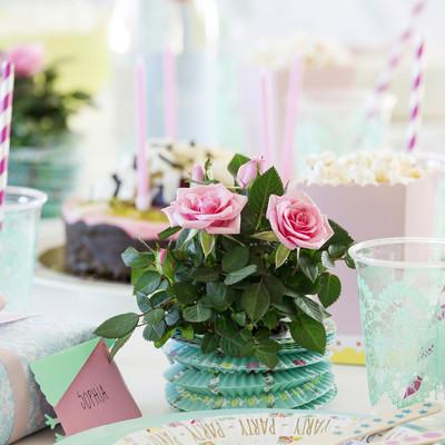 Små roser til livets store øjeblikke