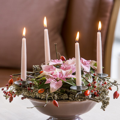 Advent wreath with miniature plants