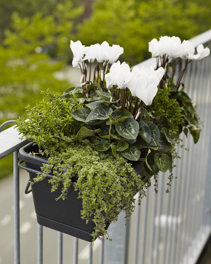 Floradania marketing: sensommerudsigt fra altanen